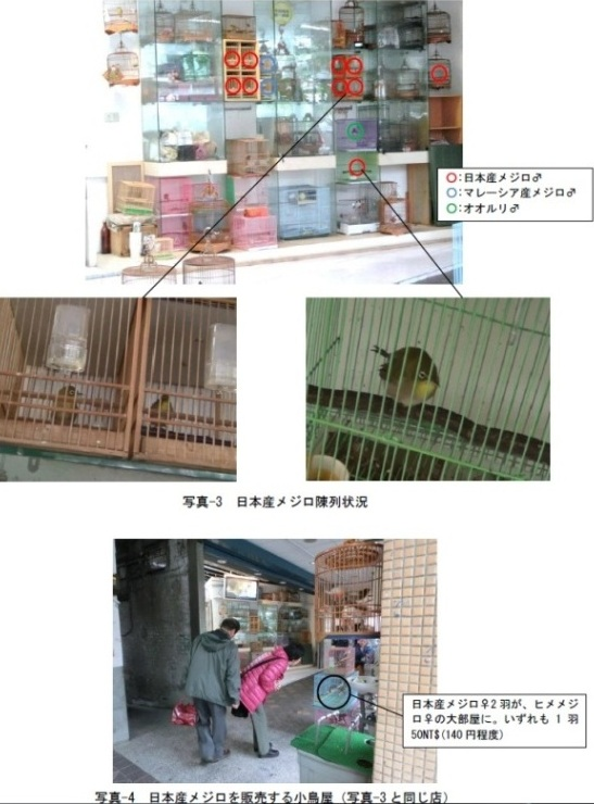 taiwan2.2.jpg